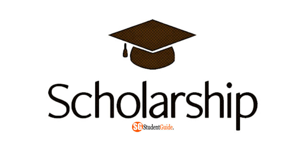 How To Get Scholarships For College 2020 (+ mistakes to avoid)