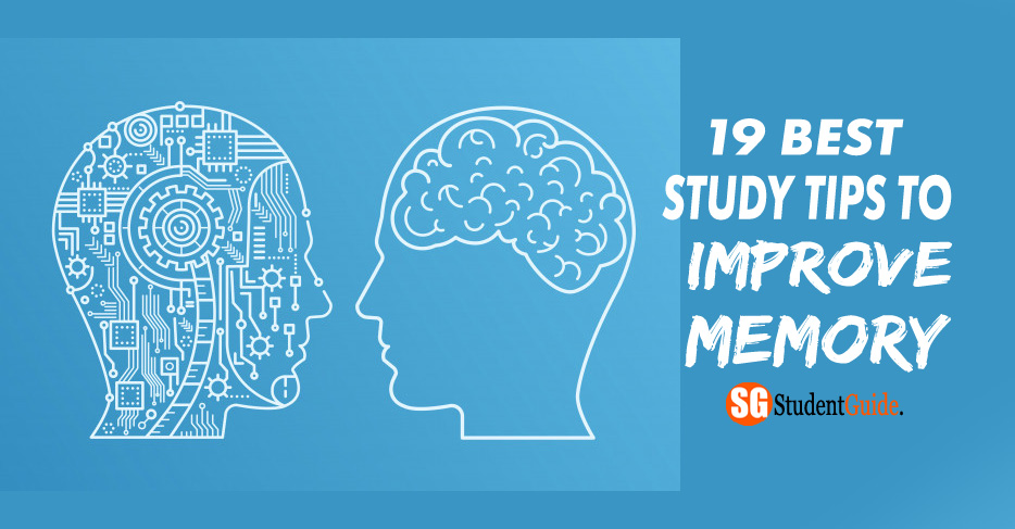 19 Best Study Tips To Improve Memory