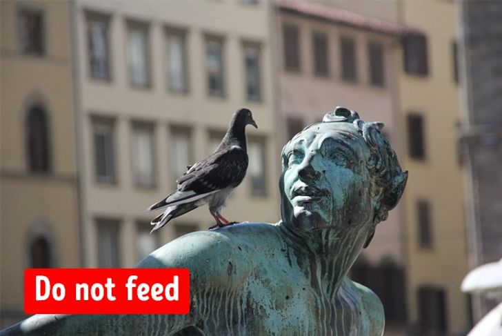 9 Weird Things Prohibited Around the World