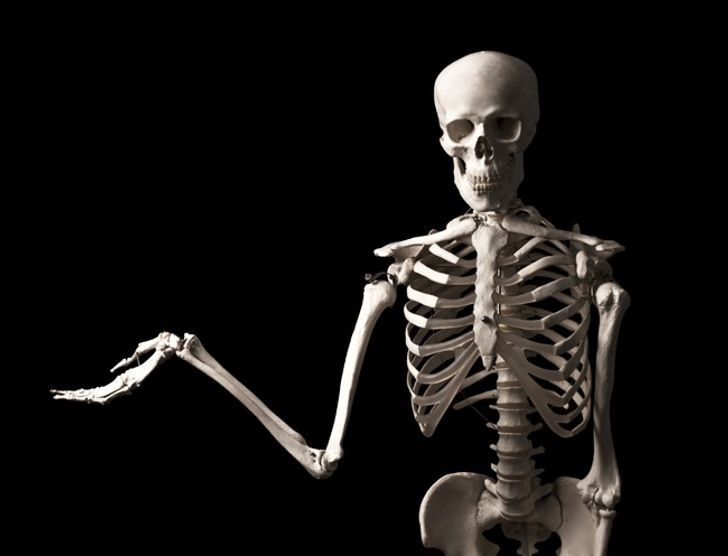 15 Facts About the Human Body That Will Send Chills Down Your Spine