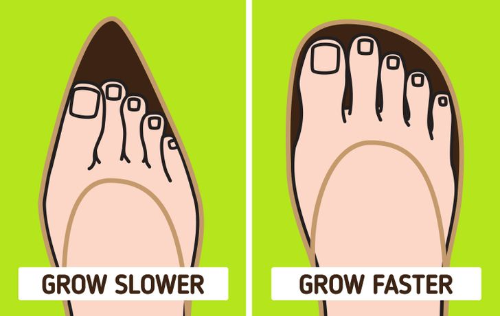 Why Fingernails Grow Faster Than Toenails