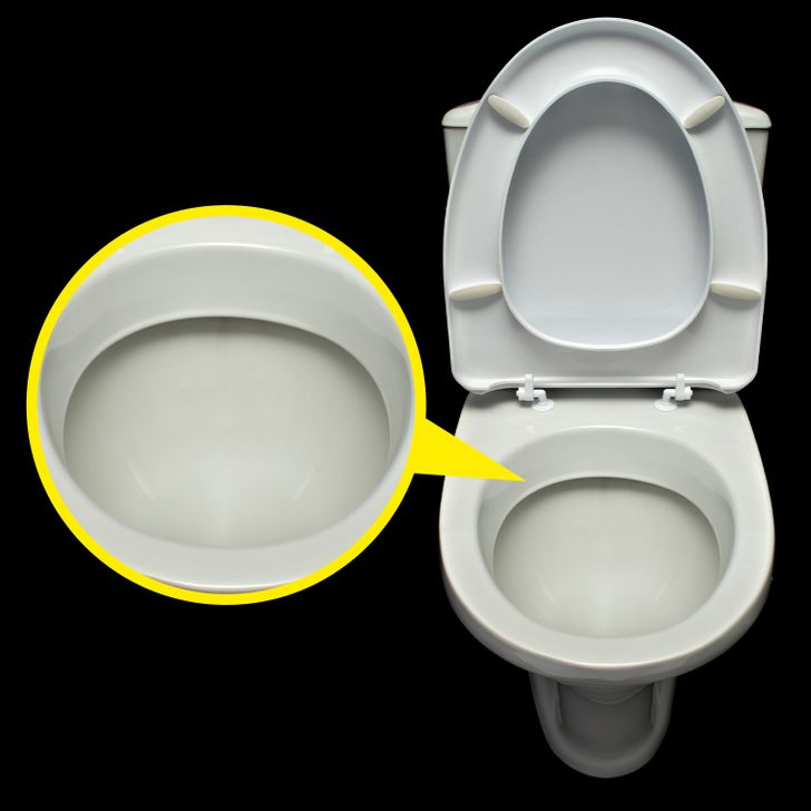 Why are Toilets White? 3 Facts About the Color of Commodes